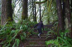 Soapstone Lake Oregon - soapstone lake loop hike hiking in portland oregon and