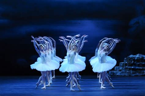 dance of the swans swan lake soars at pittsburgh ballet theatre