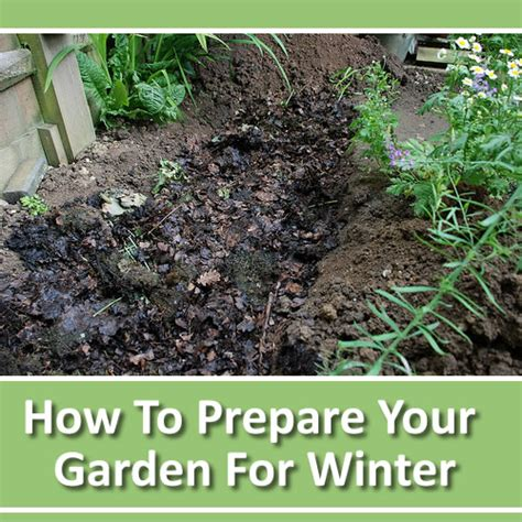 how to prep your garden for winter - How To Prepare Garden For Winter