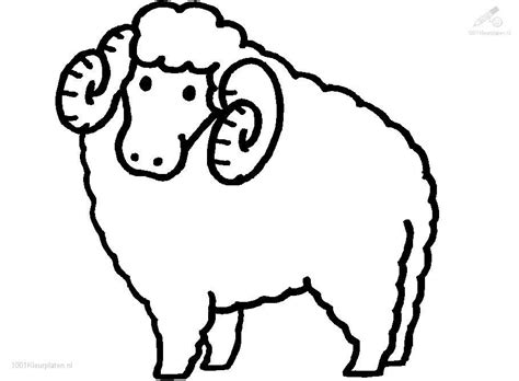 black sheep coloring pages coloring pages for free coloring pages sheep az coloring pages