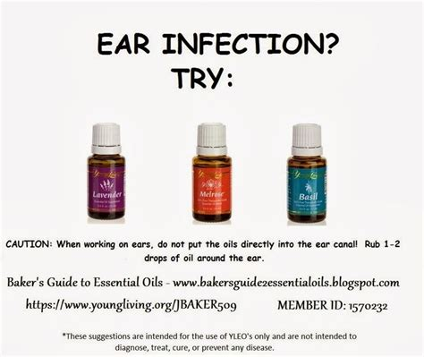 essential oils for ear infection essential oils for ear infections healthy mind