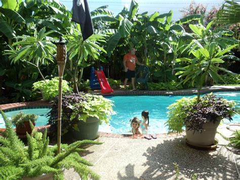 hawaiian backyard tropical backyard tropical landscaping ideas