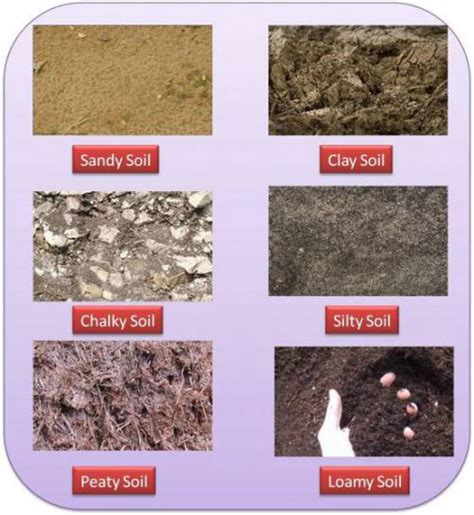 types of garden soil soil types best for growing is loamy best ph around 6 to