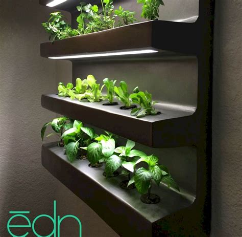 indoor hydroponic wall garden  decorathing