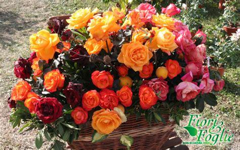 di masino fiori a masino va in scena l ultimo spettacolo dei fiori d
