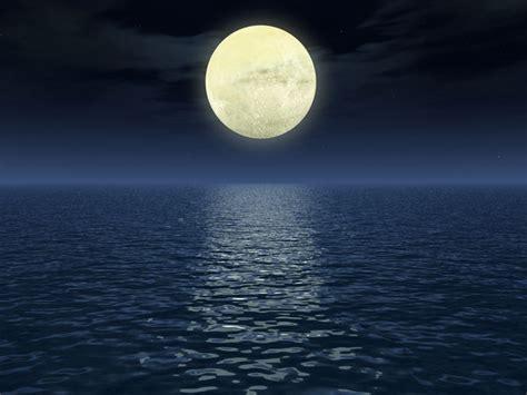 pendant la pleine lune plantez les l 233 gumes racines