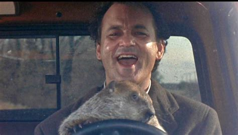 groundhog day s big show groundhog day the is all about karma