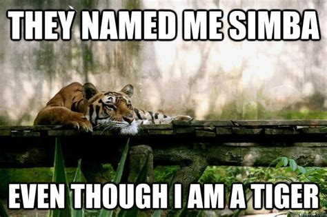 Tiger Meme - they named me simba even though i am a tiger depressed