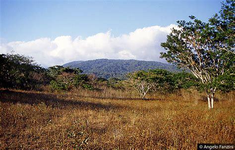 consolato costa rica costa rica spiagge mare e natura guanacaste