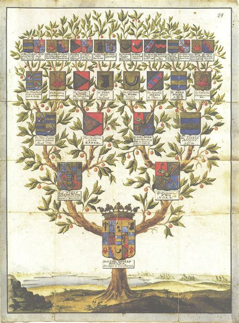 .......arbol genealogico
