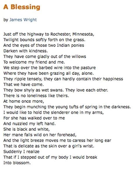 themes of a blessing by james wright a blessing james wright poetry pinterest