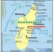 Madagascar 2 Dvd Car Pictures