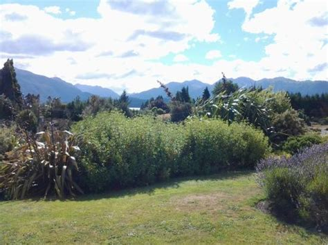 Blue Mountain Cottages Te Anau by View From Cottage Picture Of Blue Thistle Cottages Te