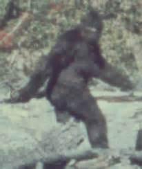 imagenes reales yeti yeti hombre de las nieves o bigfoot