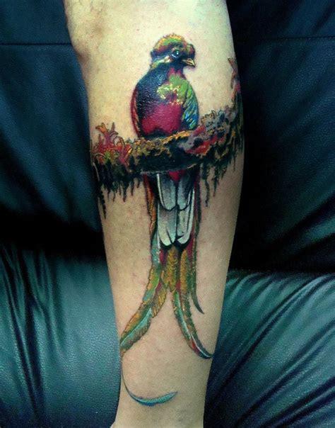 tribal quetzal tattoo 17 best images about quetzal on birds quetzal
