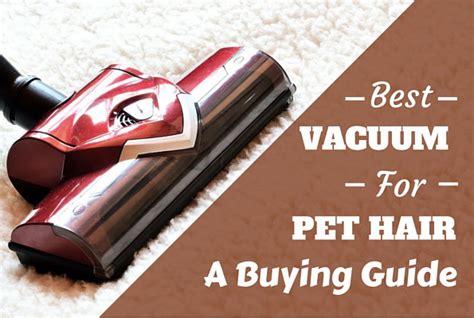 vacuum  pet hair buying guide top models