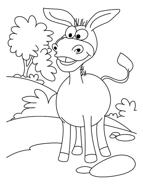 Mexican Donkey Coloring Page | donkey coloring page mexican donkey is surprised