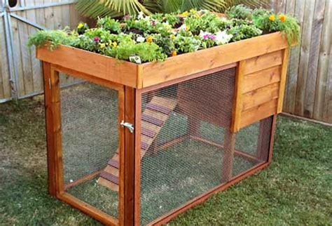green roof chicken coop garden sheds houses planting