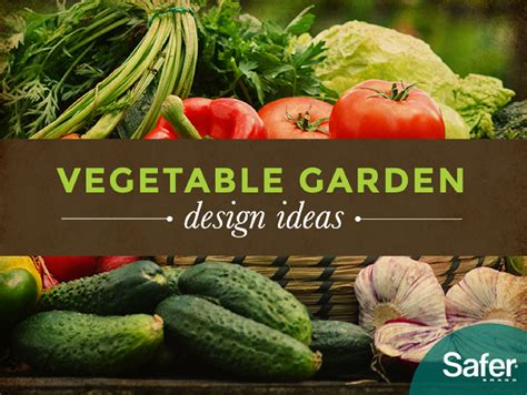 Ideal Vegetable Garden Layout How To Plan Vegetable Ideal Vegetable Garden Layout