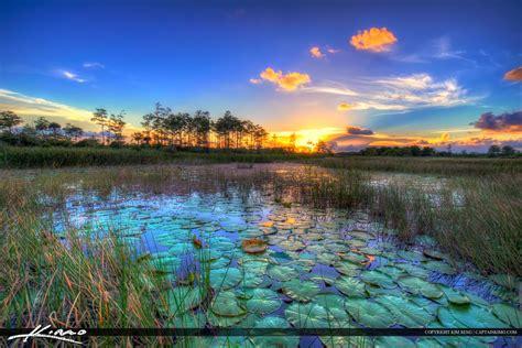 Beautiful Where Is Palm Beach Gardens Fl #5: Sunset-Wetlands-Florida-Landscape-Palm-Beach-Gardens.jpg