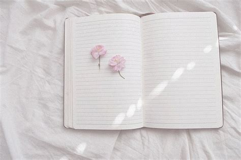 aesthetic white image result for white aesthetic blanche white aesthetic and photography