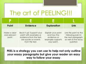 A Level Essay Structure by Peel Essay Writing