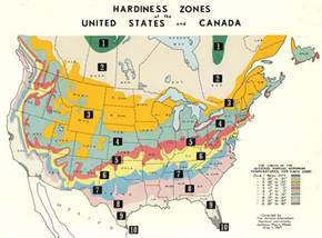 Us Zones For Gardening - gardening zones
