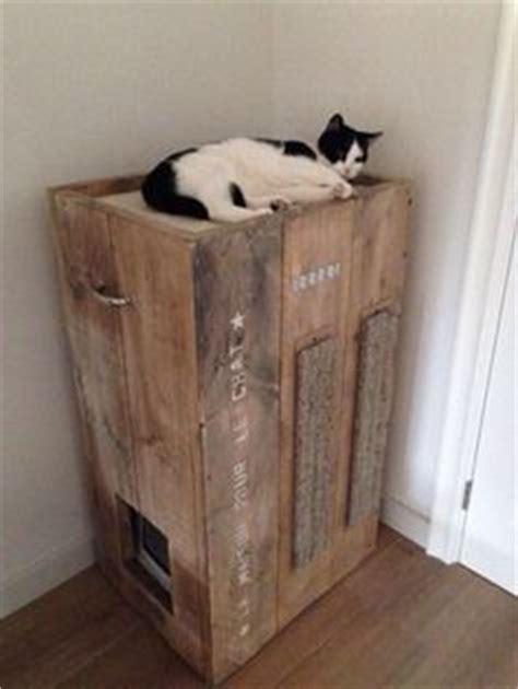 litter box in bathroom hidden cat litter box inside bathroom vanity includes cat