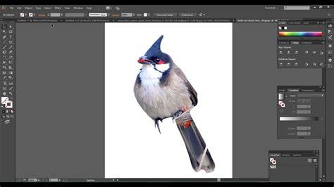 remove background   image  illustrator youtube