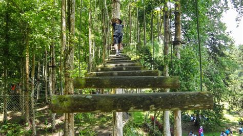 Bali Botanic Gardens Bali Botanical Garden In Bedugul Highland 187 Bali Hello Travel