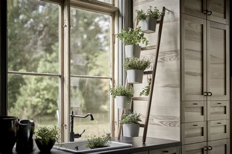 growing an herb garden indoors 5 indoor herb garden ideas for your kitchen