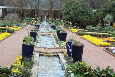 Riverbanks Botanical Garden by Kangaroo Walkabout Picture Of Riverbanks Zoo And