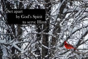 Set Appart by Set Apart God S Abundant Blessings