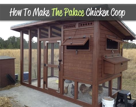 how to build a backyard chicken coop how to make the palace backyard chicken coop homestead survival