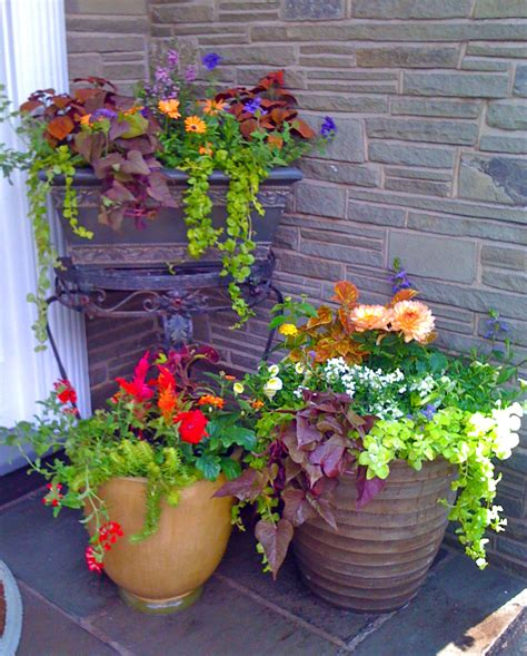 flower pots for residential client k 2010 amy fancher s studio blog