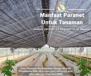 Jaring Paranet Sidoarjo manfaat paranet untuk tanaman jual paranet murah