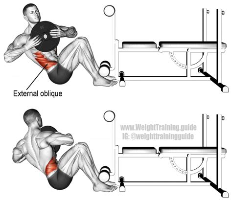 weighted russian twist exercise guide and weight guide