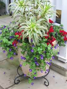 Planter Ideas Sun by 25 Best Ideas About Container Garden On