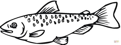 king salmon coloring page salmon coloring pages