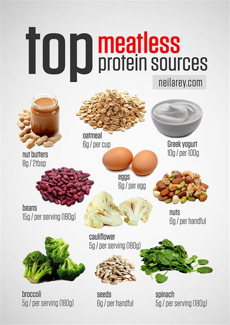 protein in 25 best ideas about vegetarian protein sources on vegetarian protein