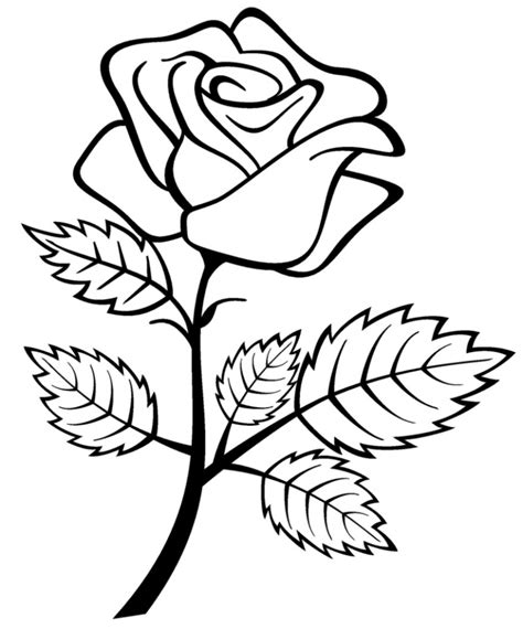 Rose Drawing For Kids Drawing Art Gallery Free Drawing For