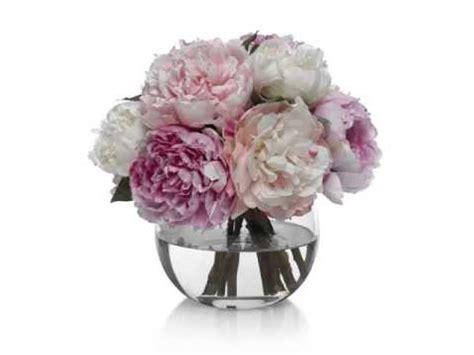 peonies in vase peony vase beautiful pictures