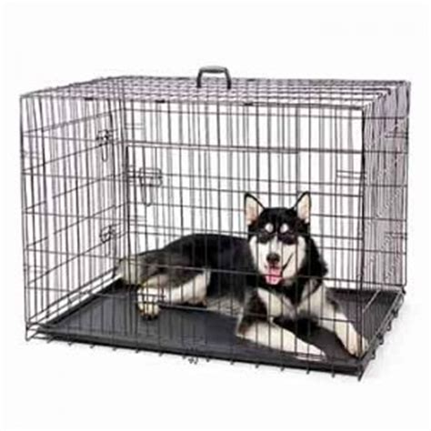 gabbie x cani gabbia per cani trasportino per cani