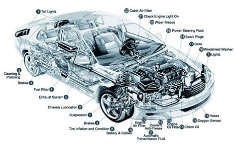 sections of a car car parts diagrams to print diagram site
