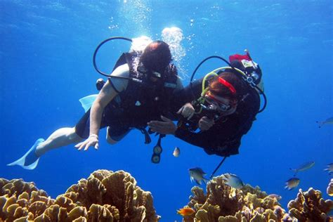 dive places top 5 scuba diving places in india weekend thrill