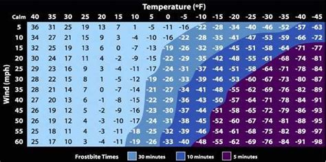what temperature is cold to leave a outside how does it take to get frostbite or hypothermia business insider