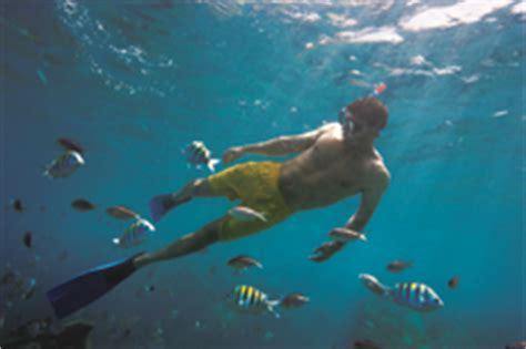 catamaran boat rides in jamaica falmouth snorkeling excursion reviews ratings cruise