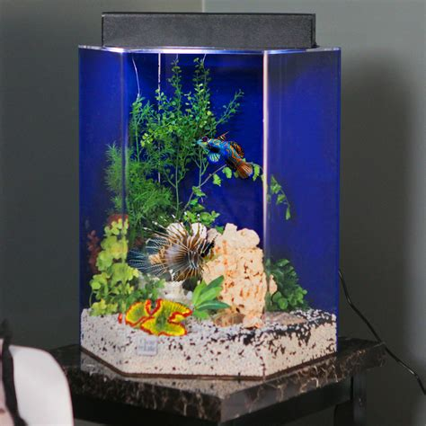 Acrylic Vs Kaca pengrajin acrylic jakarta pusat jasa pembuatan akuarium