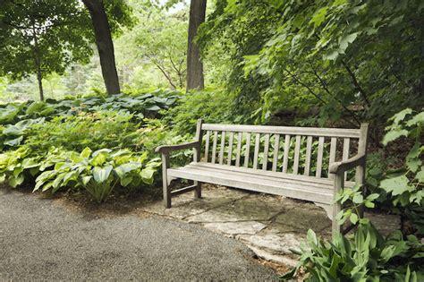 backyard bench ideas home design inspirations