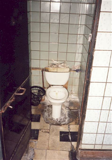 bathrooms in russia русские туалеты russian toilets toilets of the world